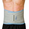 Picture of Bodymedics Lumbar Support